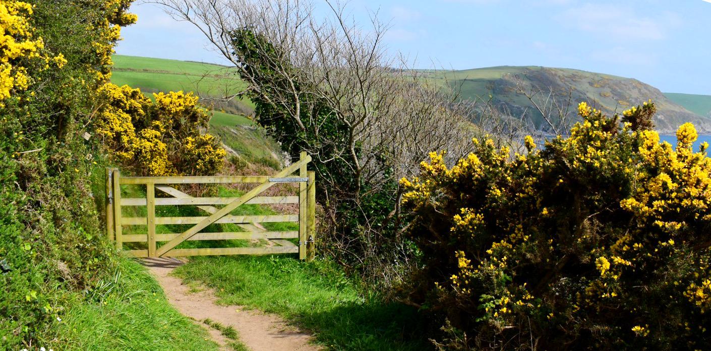 Plenty of beautiful gateways