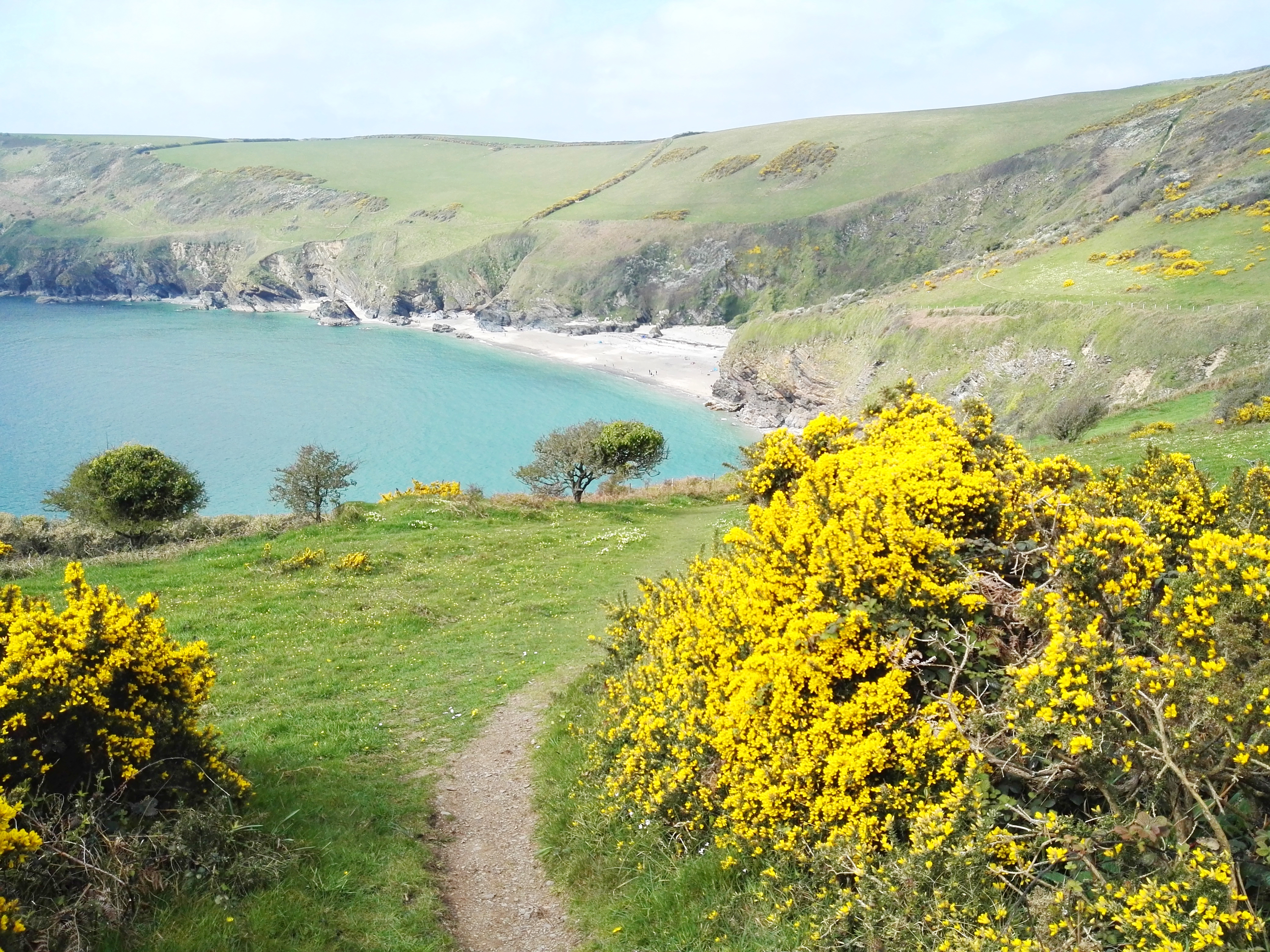 looking over Lantic from the South West Coast Path